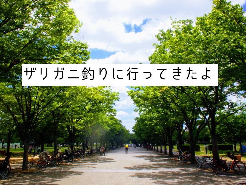 大阪 ザリガニ 釣り 大阪でザリガニ釣りなら大泉緑地公園へ!30匹以上釣れました!最新情報あり